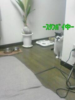 070721_183412001